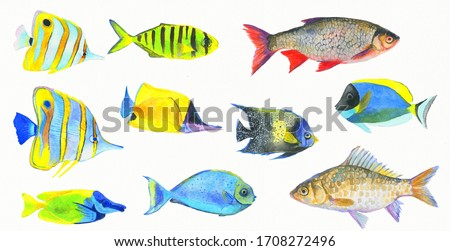 Set of oceanic watercolor fish. Hand painted illustration.