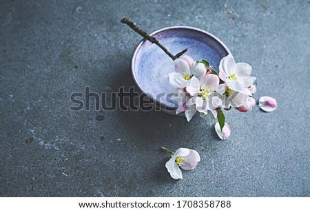Blooming apple branch on a ceramic dish. Still life. Copy space #1708358788