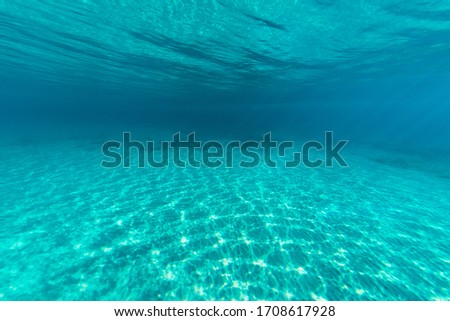 underwater world wide angle view