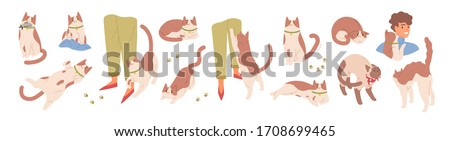 Collection of scenes with cute cat. Various pet emotions. Friendly, scared, sharing food, ready to attack, rubbing, threatening, sharing food, worrying kitty. Vector illustration in flat cartoon style #1708699465