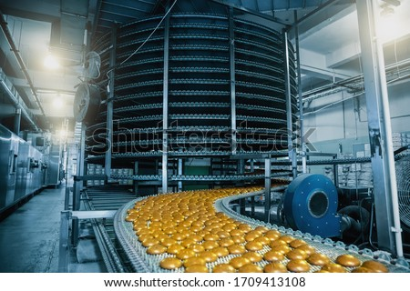 Automatic conveyor belt with cakes, baking process in confectionery factory. Food industry, toned Royalty-Free Stock Photo #1709413108