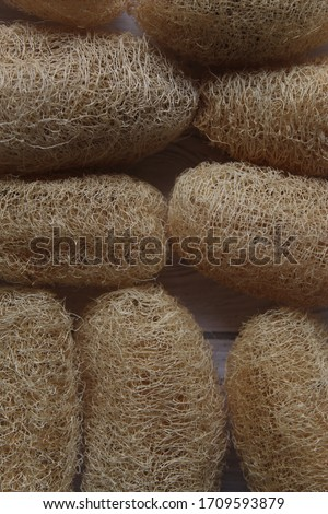 Many luffa piles are gathered on the white wooden table and spread all over. Is a natural product. #1709593879