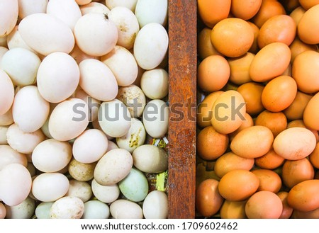 Fresh farm chicken eggs & duck eggs on a wooden background Raw chicken eggs & duck eggs in egg box at the market. White egg and brown egg sell at the market. #1709602462