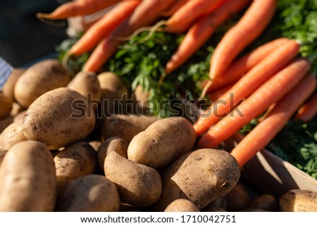 Fresh carrots and potatoes outside at the market #1710042751