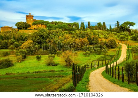 Rural tourism. Cozy picturesque farms in the hills of Tuscany. Winding dirt road rises to the farm.  Olive trees on green grassy meadows. The concept of active, rural and photo tourism #1710104326
