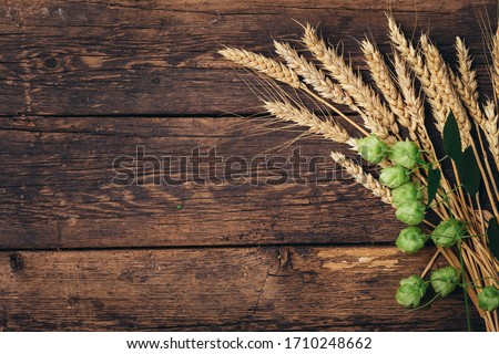 Beer brewing ingredients Hop and wheat ears on wooden cracked old table. Beer brewery concept. Hop cones and wheat closeup. Sack of hops and sheaf of wheat on vintage background. #1710248662