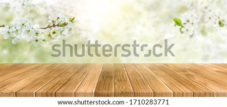 Spring background with white blossoms and sunlights in front of a wooden table. Spring apple garden on the background.