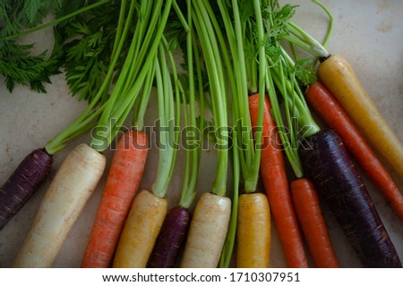 A lot of Carrots Colorful #1710307951