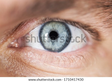 Close-up of a bright blue eye on the face of a male #1710417430