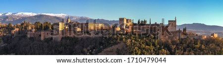 panoramic view of the Alhambra Palace and Charles V with a foreground of vegetation and a background of snowy mountains,