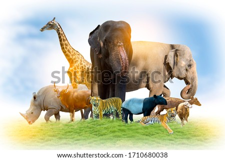 Wildlife Conservation Day Wild animals to the home. Or wildlife protection #1710680038