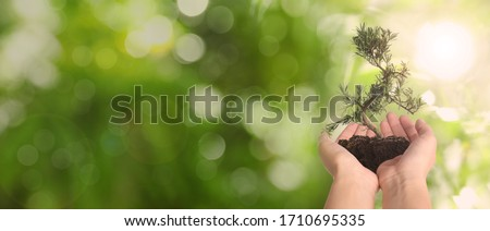 Woman holding small tree in soil on blurred green background, banner design with space for text. Ecology protection #1710695335