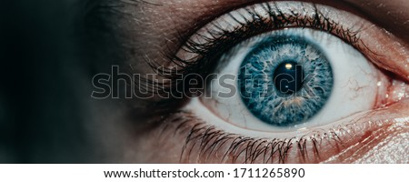 Close up of blue eye with capillaries. Scared look. Ophtalmology and medicine concept Royalty-Free Stock Photo #1711265890