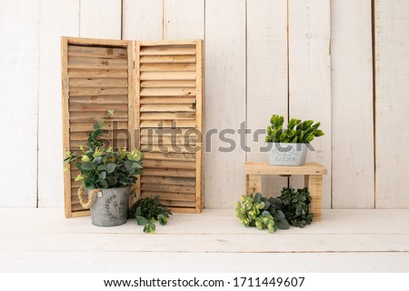 White wood backdrop decoration. Green plants on white wood background. Royalty-Free Stock Photo #1711449607