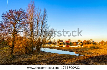 Rural nature village pond landscape. Village pond view. Pond at village #1711600933