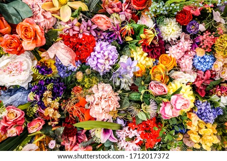 Mixed colorful flowers background. Vibrant colors of mixed flowers backdrop