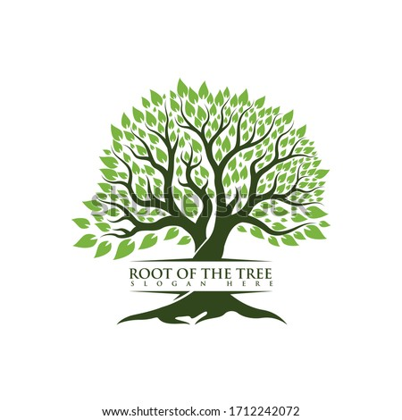 root of the tree logo illustration #1712242072