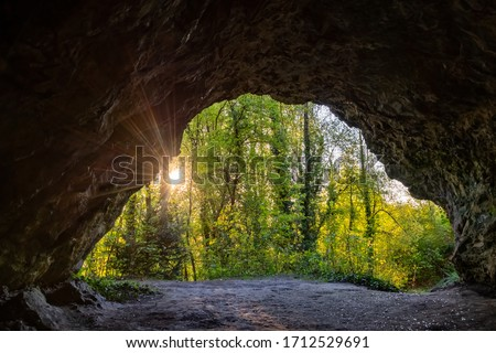"""Cave exit or orifice of """"Alte Höhle"""" that is part of the Perick-System in Hemer-Sundwig Sauerland Germany in an ancient limestone Quarry with Trees backlit by evening sunlight flashing into the dark Royalty-Free Stock Photo #1712529691"""