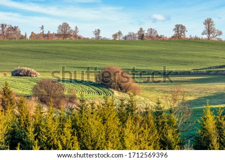 Beautiful green spring rural landscape with green field. Rural landscape. Spring landscape. Agricultural field in countryside. Beautiful Czech highland countryside #1712569396