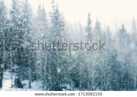 Snow in Rocky Mountain National Park, Colorado #1713082150