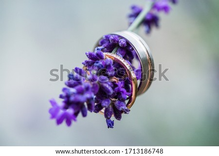 Macro picture of two white and yellow gold wedding rings with diamonds placed on the blooming lavender brunch , light green plain background