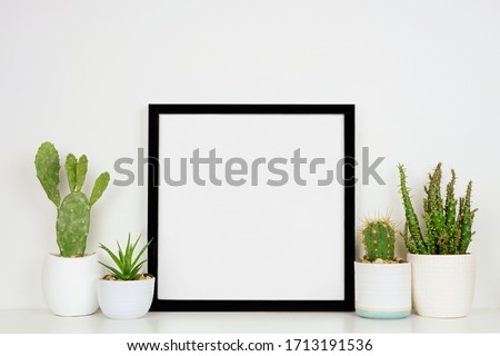 Mock up black square frame with potted cacti and succulent plants. White shelf against a white wall. Copy space. Royalty-Free Stock Photo #1713191536