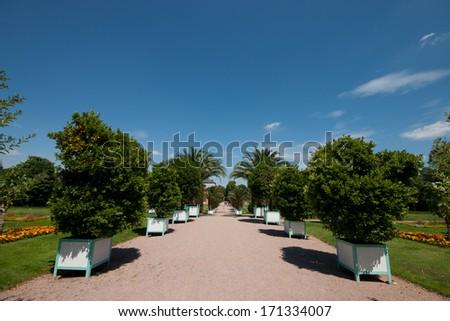 Darmstadt Orangerie #171334007