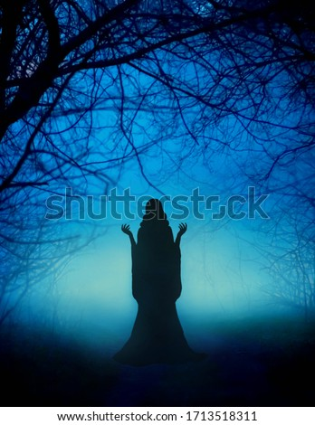 Mystical mysterious silhouette young woman girl. Fairytale witch dances magical ritual dance. Beautiful fairy lady prays backdrop amazing foggy haze black trunks enchanted trees, bright blue moonlight Royalty-Free Stock Photo #1713518311