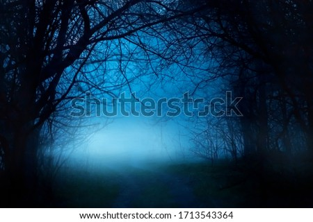 Mysterious fantasy silhouette dark branch night nature. Black mystical scary bare trunks autumn trees fog. Mystic Road way blue moonlight mist . magic gothic horror spooky forest. Background smoke #1713543364