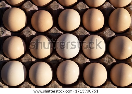 Flat lay Close-up view of raw chicken eggs in egg paper box.Overhead view of brown chicken eggs in an open egg carton.Fresh chicken eggs background. Top view Natural organic egg. healthy real food.  #1713900751