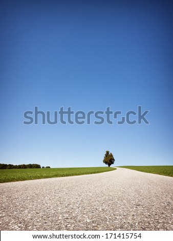 country road at the european alps #171415754
