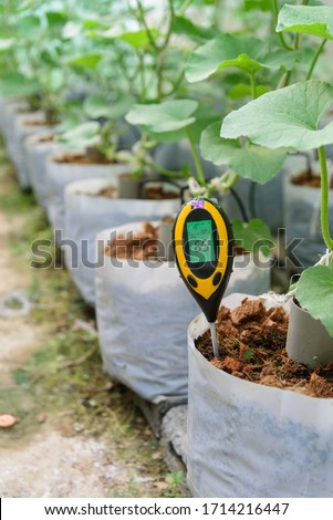 Use soil PH meter for check the PH value