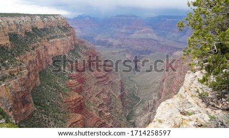 Contemplating life looking down through geological time                        Royalty-Free Stock Photo #1714258597