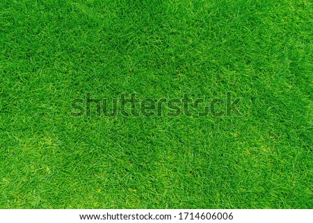 Green grass texture background, Top view of grass garden Ideal concept used for making green flooring, lawn for training football pitch, Grass Golf Courses green lawn pattern textured background. #1714606006
