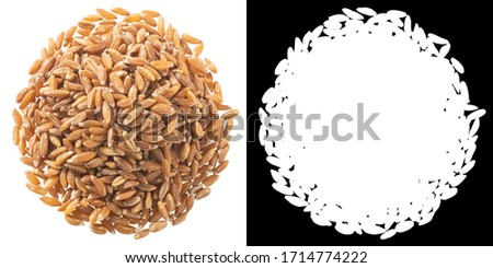 Pile of spelt, farro or einkorn hulled wheat, isolated, top view #1714774222