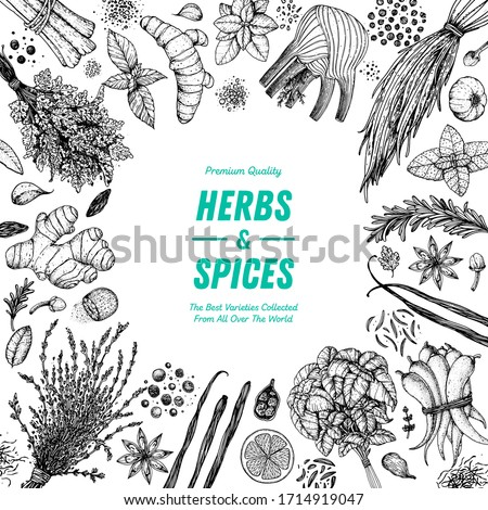 Herbs and spices hand drawn vector illustration. Aromatic plants. Hand drawn food sketch. Vintage illustration. Card design. Sketch style. Spice and herbs black and white design. #1714919047