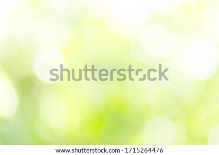 Abstract natural green bokeh background