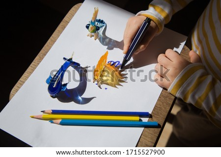 child draws pencil with contrasting shadows from souvenir glass figures of a dolphin, hedgehog and parrot. drawing of a preschooler, ideas for the development of creative thinking. Interesting events