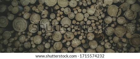 tree trunks from front view stacked on top of each other, interesting background, the best photo
