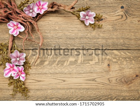 Magnolia flowers blossom on wood background with wood branch, place for text #1715702905