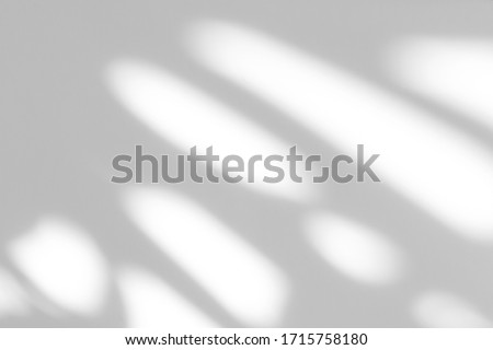 Blurred overlay effect for photo and mockups. Textured white wall with organic drop diagonal shadow of art deco stained glass window  Royalty-Free Stock Photo #1715758180