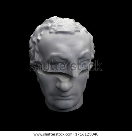 Abstract digital illustration from 3D rendering of Gattamelata bust sliced in two. #1716123040