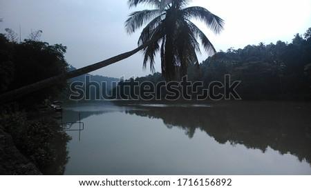nature pics of tropical Sri Lanka