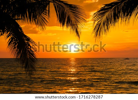 Beautiful sunset tropical beach with palm tree and blue sky for travel and vacation in holiday relax time #1716278287