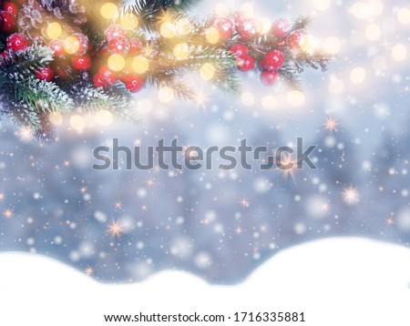 winter christmas background with snow fir branches cones on forest background #1716335881