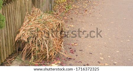 Garden waste from cutting shrubs and plants. Standing by the road and waiting to be picked up. Green garden waste collection #1716372325