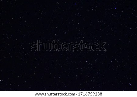 Long exposure night photo. A lot of stars with trees on foreground. Far from the city.