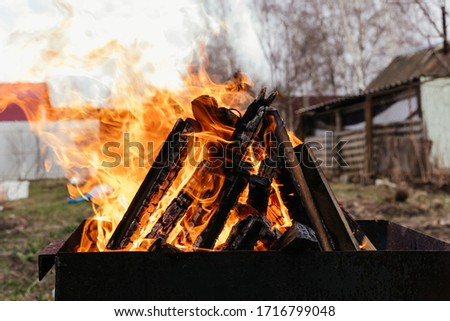 Bonfire on wooden firewood in the barbecue #1716799048