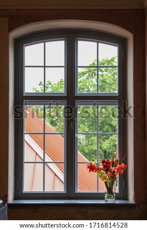 Colourful flowers on an old window sill #1716814528