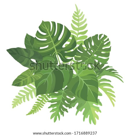 Tropical green leaves bouquet on white background. Palm branches composition. Vector illustration. #1716889237